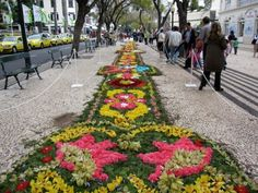 Moving to living in Madeira Portugal or relocating on the island buy/sell your second or retirement home using a CIPS Funchal agent with Global Network Connections. Funchal, Portugal, Flower Festival, Paragliding, Beach Pool, Island Life, Lisbon, Botanical Gardens, Beautiful