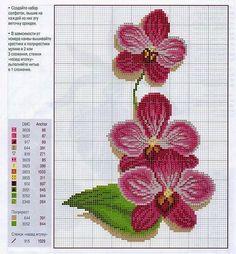 """Résultat de recherche d'images pour """"flower for embroidery cross stitch"""" Tiny Cross Stitch, Cross Stitch Flowers, Cross Stitch Charts, Cross Stitch Designs, Cross Stitch Patterns, Beading Patterns, Flower Patterns, Embroidery Patterns, Cross Stitching"""