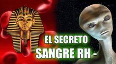 LA SANGRE RH NEGATIVO ESCONDE EL GRAN SECRETO DE LA HUMANIDAD | VM Granm...