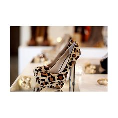 cheeta print | Tumblr ❤ liked on Polyvore