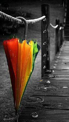 Regenbogen                                                                                                                                                                                 Mehr