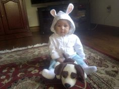 Asia bunny