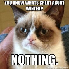 Grumpy cat and I have this in common. Nothing great about winter
