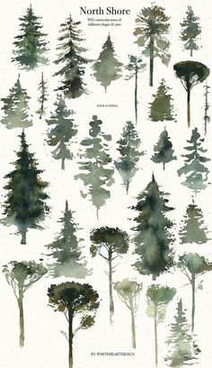 North Shore Vintage Watercolor Illustration Kit Landscapes Animals Birds Conifer Trees Evergreens Fir-trees Winter Deer Wolf Bear Raven
