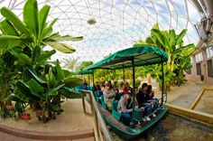 Best Epcot Attractions & Ride Guide - Disney Tourist Blog