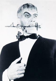 """You Rang?"" Lurch played by the great Ted Cassidy...this pic was just to funny not to pin"