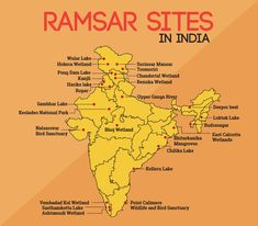 Ramsar 10 more wetland sites from India - Vignan IAS Academy date-wise current affairs Geography Map, Geography Lessons, Teaching Geography, Physical Geography, World Geography, General Knowledge Book, Gernal Knowledge, Knowledge Quotes, India World Map