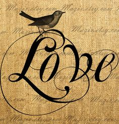 Vintage Bird on a Decorative Word LOVE Digital Image Great For Image Transfer on Pillows, Tea Towels and more - Style. 264