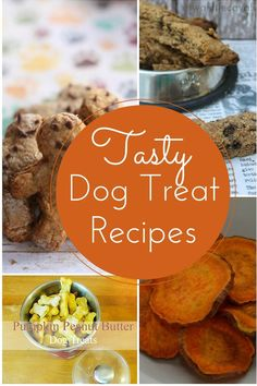 Looking for Easy & Delicious Homemade Dog Treat Recipes so you can whip up some tasty morsels for your canine companion? We've got you covered !