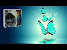 Bernat Martì Roig aka Putsasoll - Butterflies Of Water And Salt