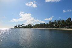 Kaibo. Grand Cayman. BWI   factorfiftyella.wordpress.com   #grandcayman #kaibo #beach #island #landscape #photography #nature