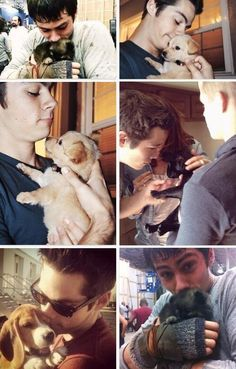 Dylan O'Brien cuddling puppies= perfection
