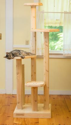 classy. also, costly. Mountain Cat 72-inch Cat Tree