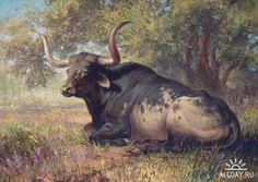 Художник Ezra Tucker - рисунки животных » ALLDAY - народный сайт о ...