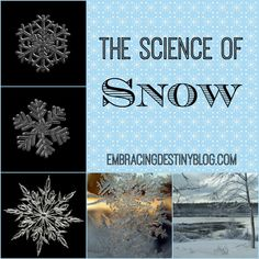 The Science of Snow: books & activities {Poppins Book Nook} at embracingdestinyblog.com