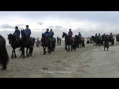 ▶ 400 friese paarden op strand Callantsoog - YouTube