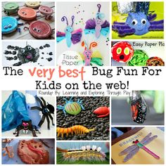 Learning and Exploring Through Play: All things Bugs