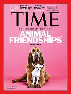 TIME Magazine Cover: The Surprising Science of Animal Friendships - Feb. 20, 2012
