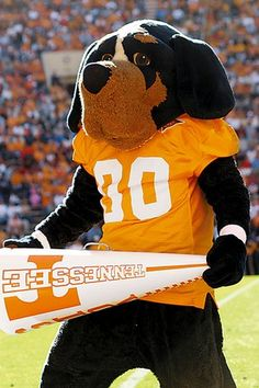 It's all FALL to me. University of Tennessee -- Smokey is the mascot of the University in Knoxville Tennessee.