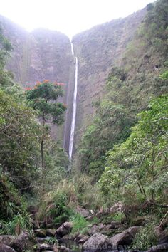Waipio Valley, whether enjoyed from the panoramic lookout above or the black sand beach below, is one of the Big Island of Hawaii's most amazing natural wonders.