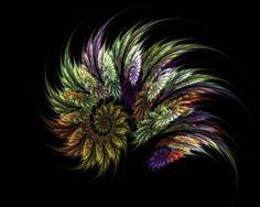 Salaschermo fractal