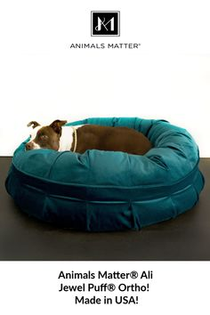 Animals Matter Donuts & Puffs manufactured in USA, from the most luxurious materials available. High quality upholstery grade fabrics and memory spring fiberfill and Nasa certified memory foam. Animals And Pets, Baby Animals, Cute Animals, Dog Weight, Coastal Cottage, Pet Beds, Dog Treats, Dog Life, Puppy Love