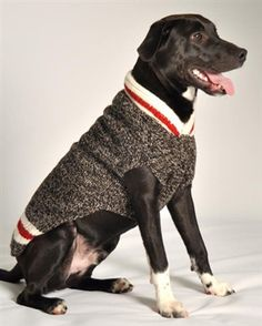 Custom Handmade Warm and soft dog sweater your dog and you will absolutely love! Knitted wool sweaters are made following the Fair Trade guidelines. All sweaters are handmade & may vary slightly in co