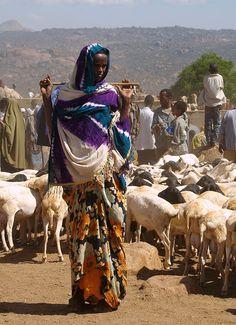 Market in Harar, Ethiopia.
