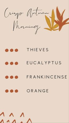 Young Essential Oils, Essential Oil Uses, Doterra Essential Oils, Essential Oil Combinations, Homesense, Diffuser Recipes, Essential Oil Diffuser Blends, Natural Living, Eos