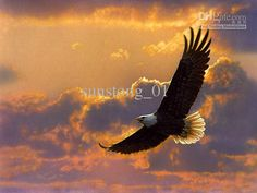 Soaring%20Eagle%20Oil%20Painting%20Animal%20Oil%20Painting%20Home%20Decoration%20Wall%20Art%20Oil%20Painting%20On%20Canvas%20From%20Sunstong_01%2C%20%2460.74%20%7C%20Dhgate.Com