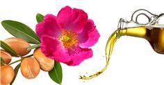Nutre tu #piel con el mejor de los aceites... ¿Argán o rosa mosqueta? Revísalo en nuestro blog: http://blog.promocionesfarma.com/belleza/argan-vs-rosa-mosqueta/?utm_medium=socialmedia&utm_campaign=PAargan&utm_source=pinterest #rosamosqueta #argan