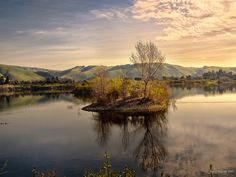 quarry lakes, fremont, ca Looks like a beautiful place to go in a row boat Fremont California, California History, California Love, Quarry Lake, East Bay, Bay Area, Beautiful Places, Places To Visit, Island