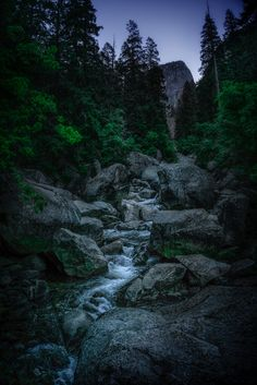 The Creek River, Explore, Outdoor, National Forest, Outdoors, Exploring, Outdoor Living, Garden, Rivers