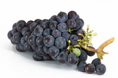 Grapes, Bunch, Fruit, Viticulture