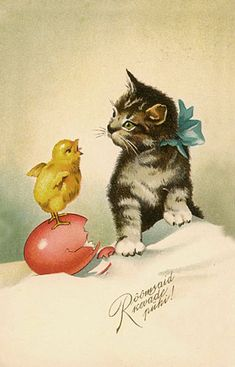vintage cat and chick easter