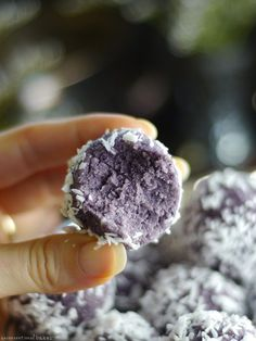Blueberry Coconut Bliss Balls (No-Bake & Free From: gluten & grains…
