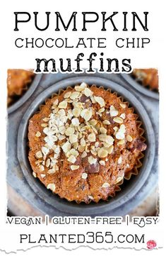 Pumpkin Chocolate Chip Muffins are a delicious snack or dessert for fall. They're easy and simple to make, and this recipe is both vegan and gluten-free. It has all the tasty flavors of the season … a bit of pumpkin, some walnuts and pecans, and cranberries. Chocolate, of course, is yummy year-round! #veganrecipe #veganmuffin #plantbasedrecipe Veggie Recipes Healthy, Vegan Breakfast Recipes, Delicious Vegan Recipes, Yummy Snacks, Yummy Food, Breakfast Ideas, Healthy Eats, Vegan Sweets, Vegan Desserts