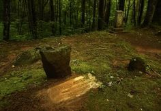 A story in stone: The mystery of the wandering boy and the unmarked grave - News Sentinel Story