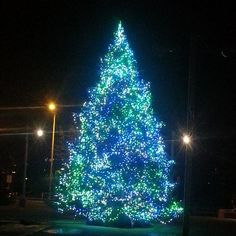 Holiday Tree Lighting at The Salem Convention Center