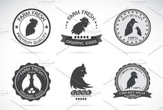 Chicken and eggs labels. Premium Icons. $8.00