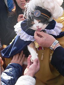 I saw this a while ago and its still awesome.  Only in Japan can a cat be named an executive of a railroad corporation. :D