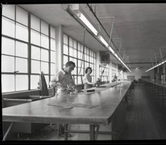 Curlee clothing company (Winchester, Ky.) :: William B. Ogden Studio Negatives Collection
