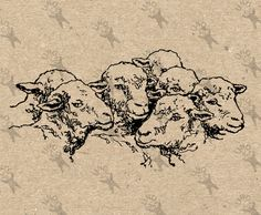 Flock of Sheep Lamb Farm Vintage image Instant Download Digital printable clipart graphic prints transfers tote towel kitchen art HQ300dpi by UnoPrint on Etsy
