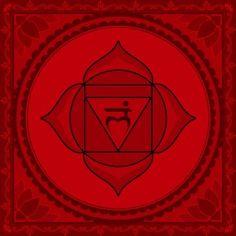 How can you heal a Root Chakra blockage? Specific tips for healing the root chakra. Learn how to heal root chakra blockages. Chakra Healing, Muladhara Chakra, Reiki, 7 Chakras, Ayurveda, Arte Chakra, Chakra Symbole, Chakra Locations, Chakra Raiz