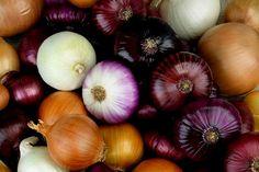 Hagyma fajták – rengeteg fajtája létezik, több időben érnek, máshoz használjuk őket. Hasznos tudnivalók, információk, érdekességek. Vidalia Onions, Cracker Barrel Copycat Recipes, Onion Benefits Health, Types Of Onions, Great Roasts, Wild Onions, Savoy Cabbage, Herbs, Diet