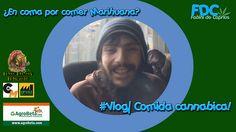 ¿Comida cannábica mortal? ¿Qué opinas? | #Vlog cannabico