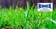 Kinex watering products