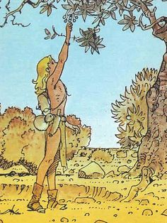 Moebius - Collector Cards (1992) - The Gardens of Aedena - Stel