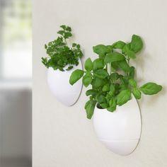 Denne smarte potte vander sig selv, og er derfor perfekt til dem med mindre grønne fingre. Potten har et nemt ophæng, som gør den kan hænges på de fleste horisontale overflader. Du får et moderne, stylet og nemt system, der kan give dig pæne blomster, lækre urter eller andre fine planter indendørs. Udvælg blot din ønskede plante, sæt i potten og vand, hæng op og se det gro.