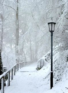 ✯ Winter Snow ::•:: Unknown Photography ✯